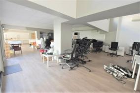 Locaux professionnels de 236 m² à louer - ref:10198774